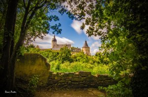 Blick vom Schlossgarten auf das Altenburger Schloss