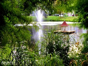 Am Pauritzer Teich