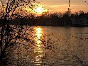 Sonnenuntergang am Großen Teich